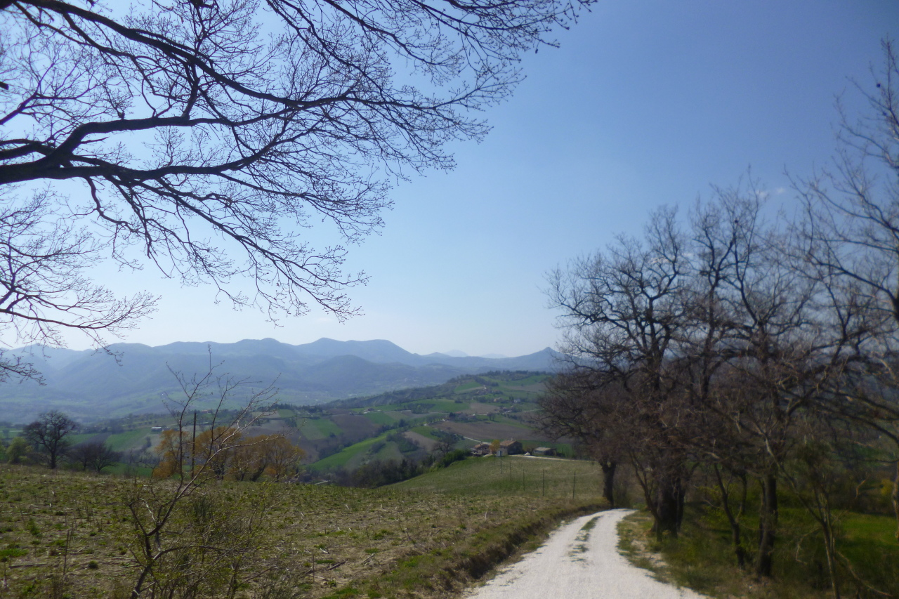 Rustico / Casale in vendita a Apiro, 9999 locali, Trattative riservate | Cambio Casa.it