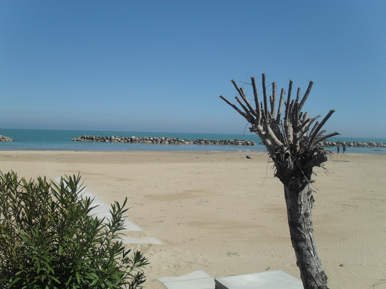 Bilocale Francavilla al Mare  2