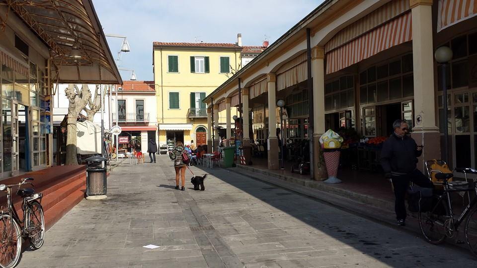 Capannone in vendita a Viareggio, 2 locali, prezzo € 200.000 | CambioCasa.it
