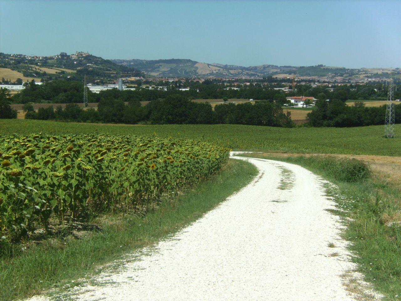 Rustico / Casale in Vendita a Monte Roberto