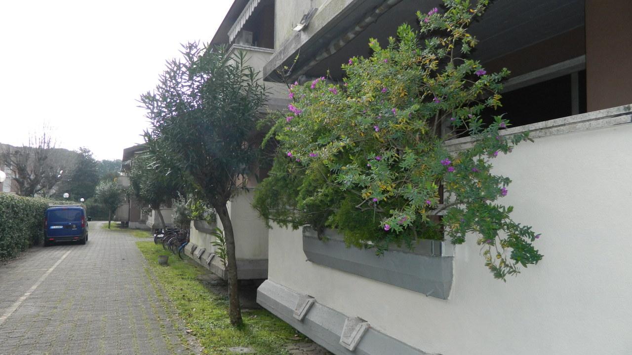 vendita appartamento massa   280000 euro  5 locali  110 mq