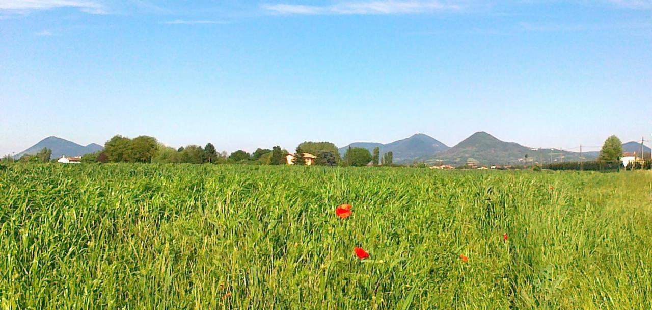 Terreno Agricolo in vendita a Poggio San Marcello, 9999 locali, prezzo € 40.000 | Cambio Casa.it