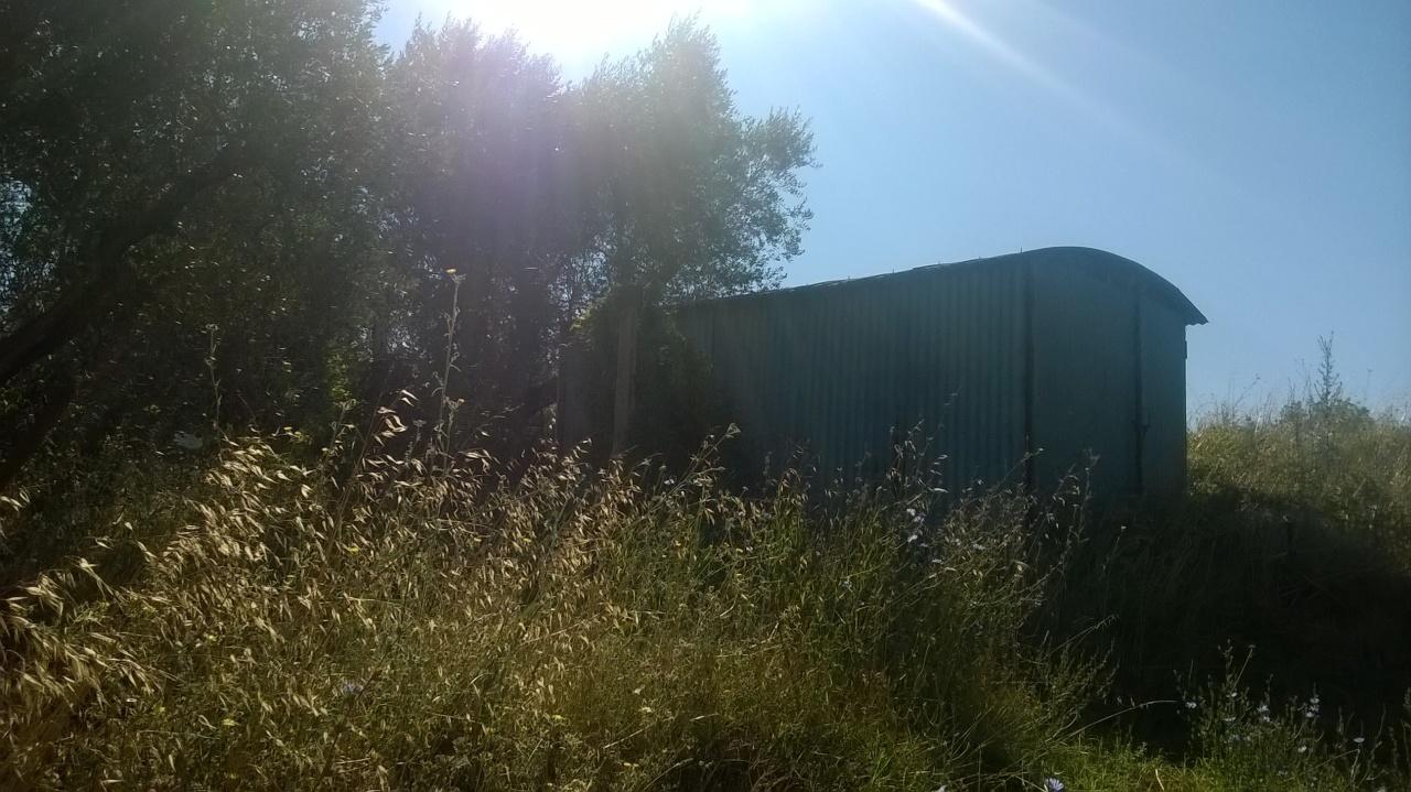 Agricolo - Seminativo a Lugnano in Teverina Rif.7483653