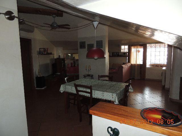 vendita appartamento massa   295000 euro  4 locali  110 mq