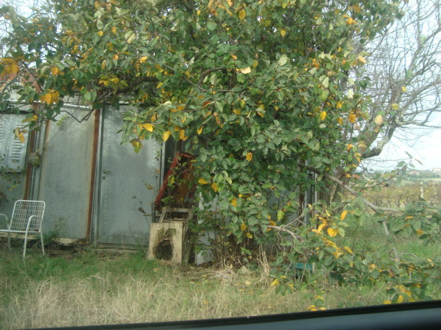 Rustico / Casale in Vendita a Montemarciano