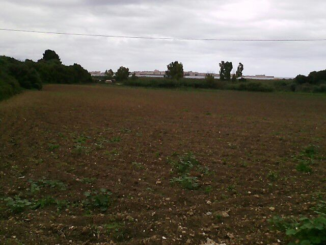 Agricolo - Seminativo a ISOLA, Siracusa Rif.5613896