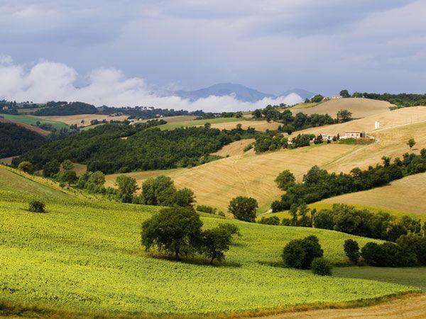Terreno Agricolo in vendita a Montecarotto, 9999 locali, prezzo € 30.000 | Cambio Casa.it