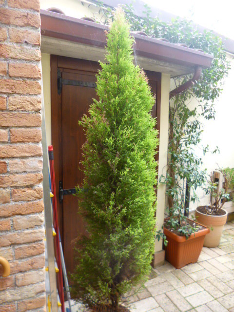 Soluzione Indipendente in vendita a Jesi, 9999 locali, prezzo € 150.000 | Cambio Casa.it
