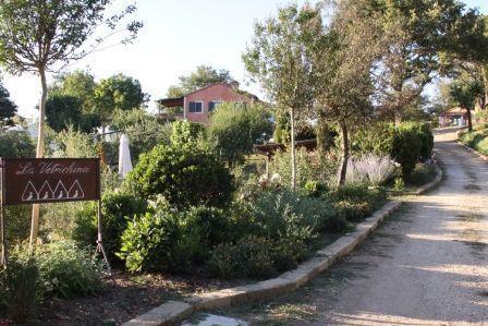 Rustico / Casale in Vendita a San Casciano dei Bagni