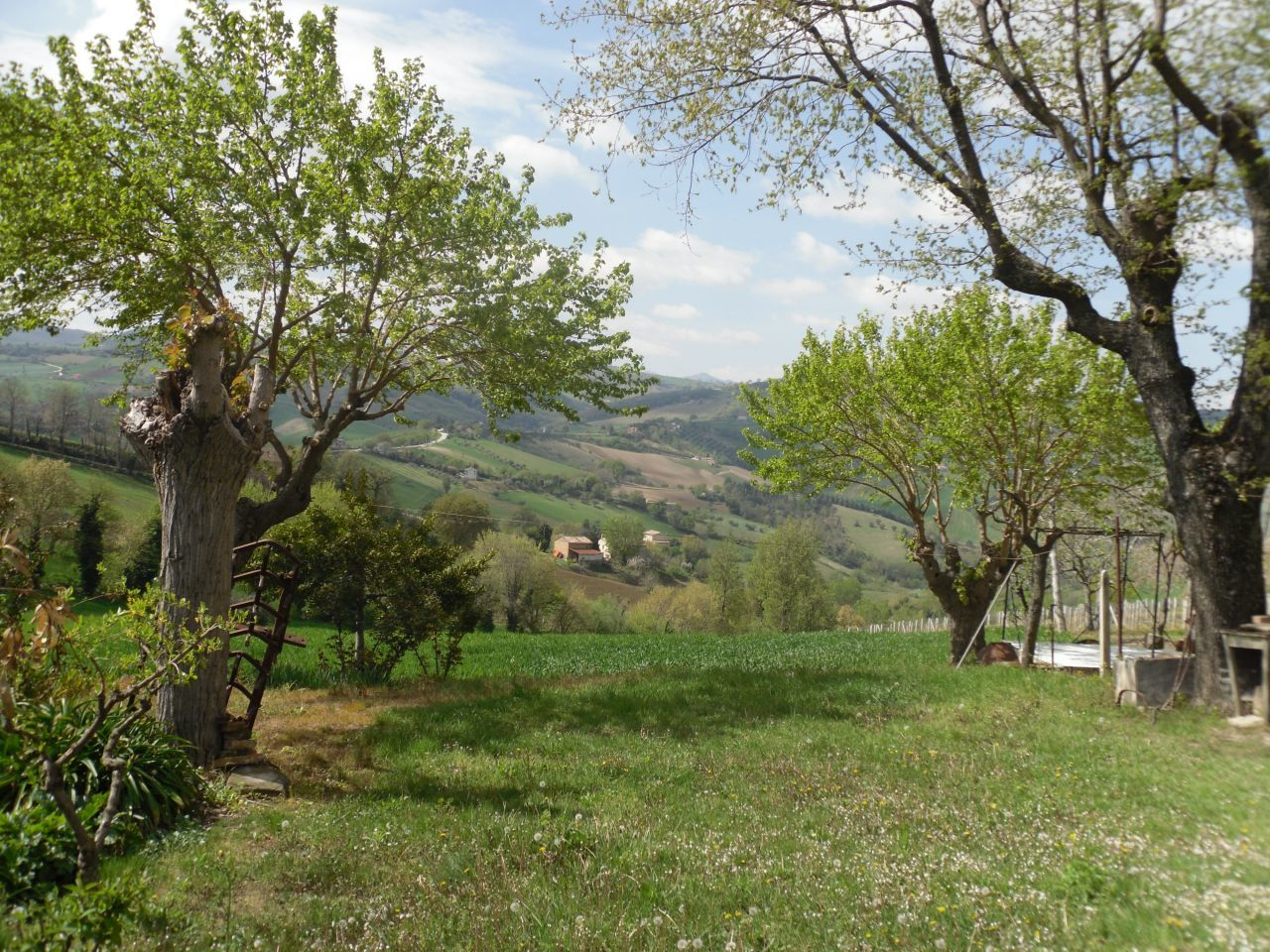 Soluzione Indipendente in vendita a Staffolo, 7 locali, prezzo € 140.000 | Cambio Casa.it