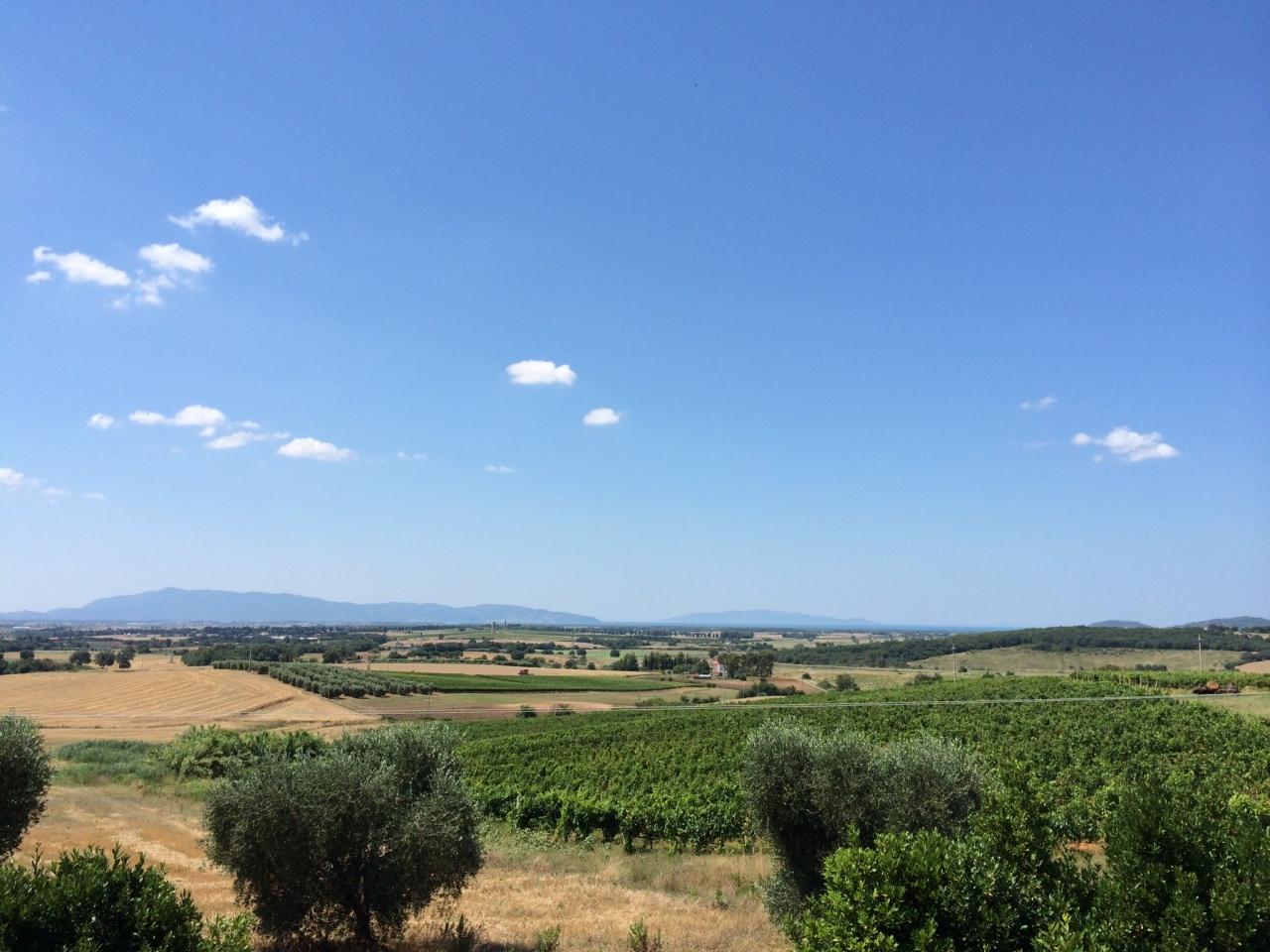 Rustico / Casale in vendita a Magliano in Toscana, 15 locali, prezzo € 1.450.000 | Cambio Casa.it