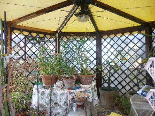 Appartamento in affitto a Castelbellino, 4 locali, prezzo € 400 | Cambio Casa.it