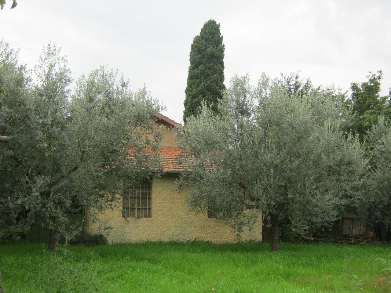 Rustico / Casale in Vendita a Frascati