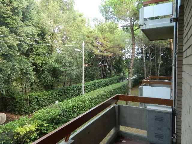 vendita appartamento massa   255000 euro  4 locali  68 mq