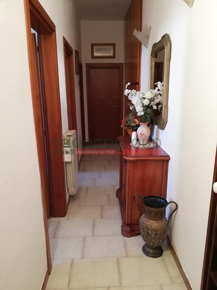 Appartamento in affitto a fabbricotti livorno case in for Case livorno affitto