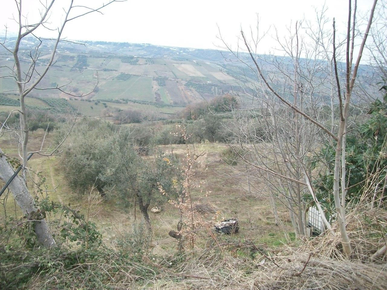 Terreno agricolo in vendita a Castel Frentano (CH)