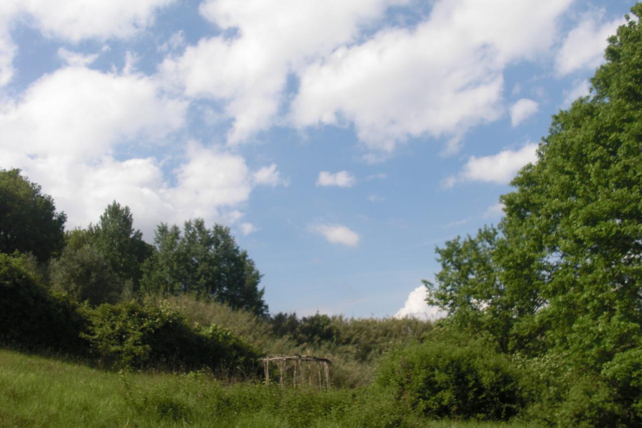 Terreno agricolo a Casciana Terme Lari (2/2)