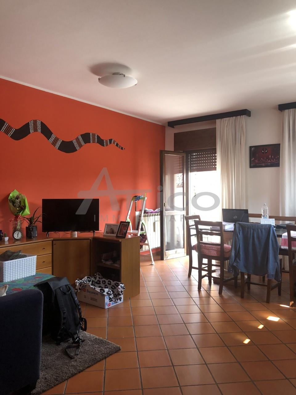 Vendita Multivani, Costa di Rovigo