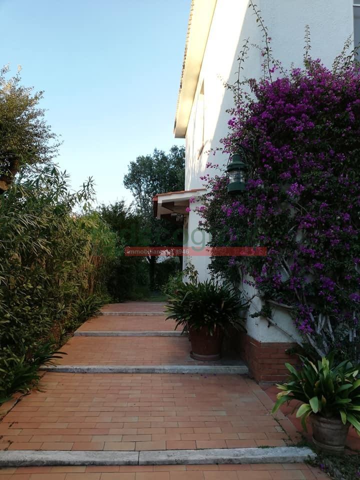 Casa singola a Livorno (2/5)