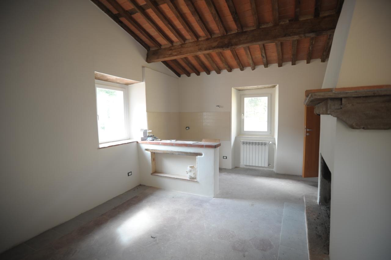 Appartamento in affitto a Seravezza (LU)