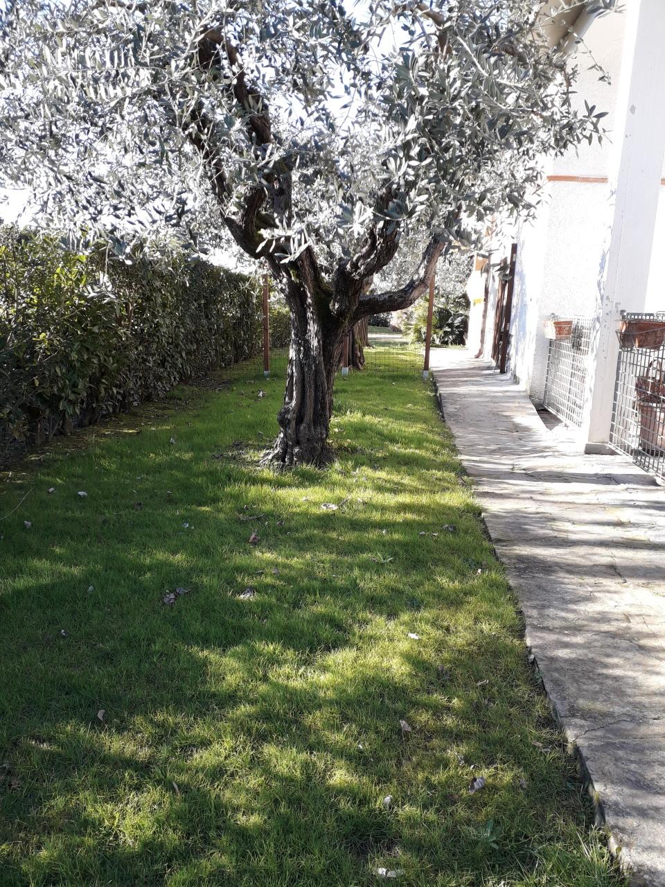 Stabile/Palazzo a Pietrasanta