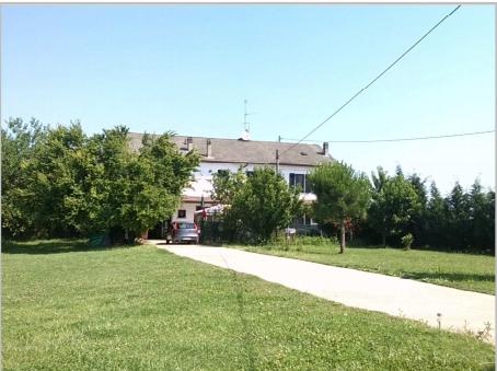 Foto 1 di Villa Strada Provinciale 211 della Lomellina 5, Sale