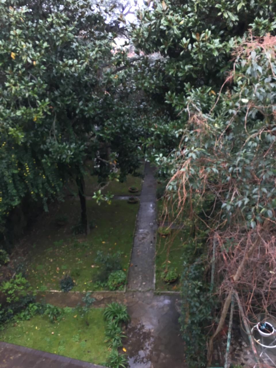 Casa semindipendente a Livorno (2/4)