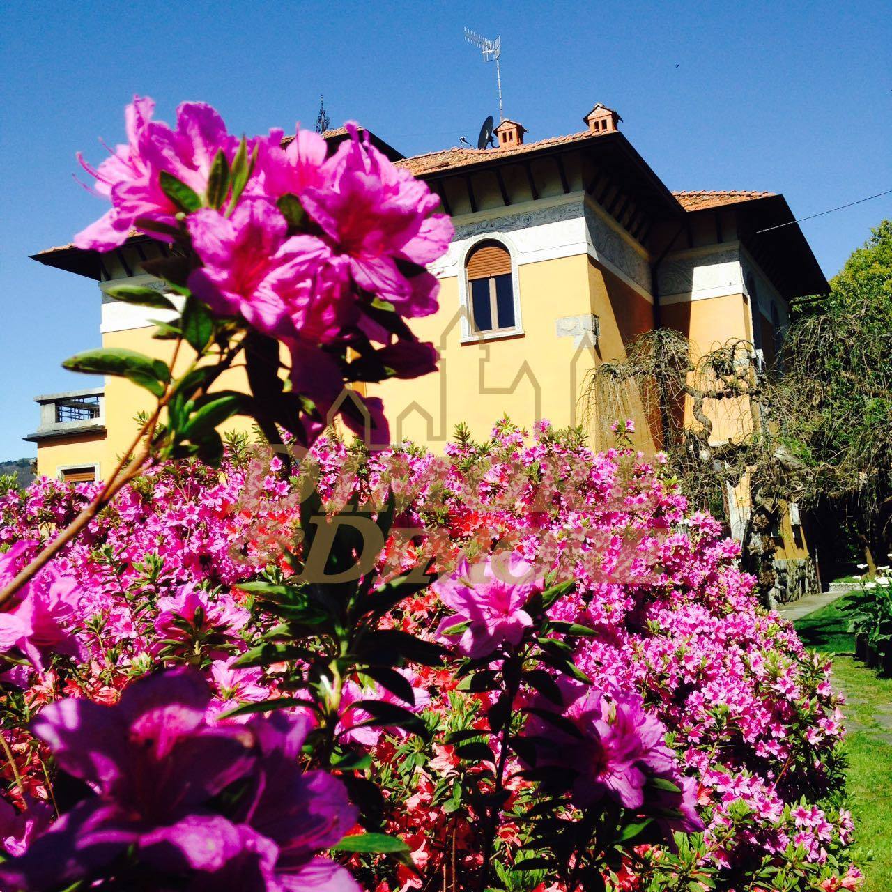Villa unifamiliare in vendita - 541 mq