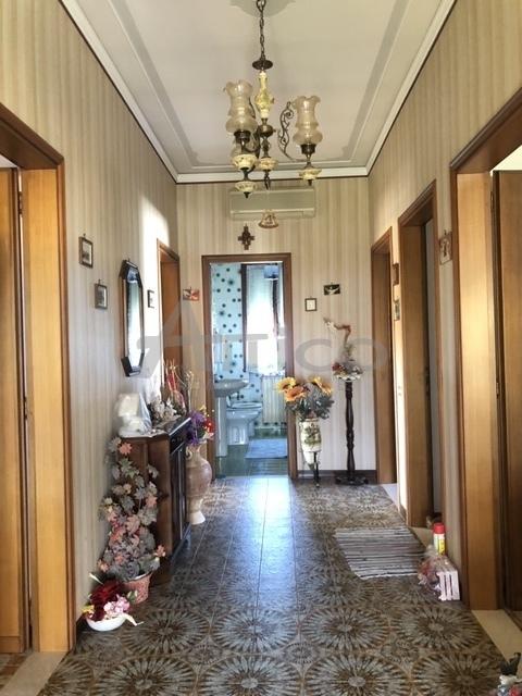 Vendita Multivani, Rovigo