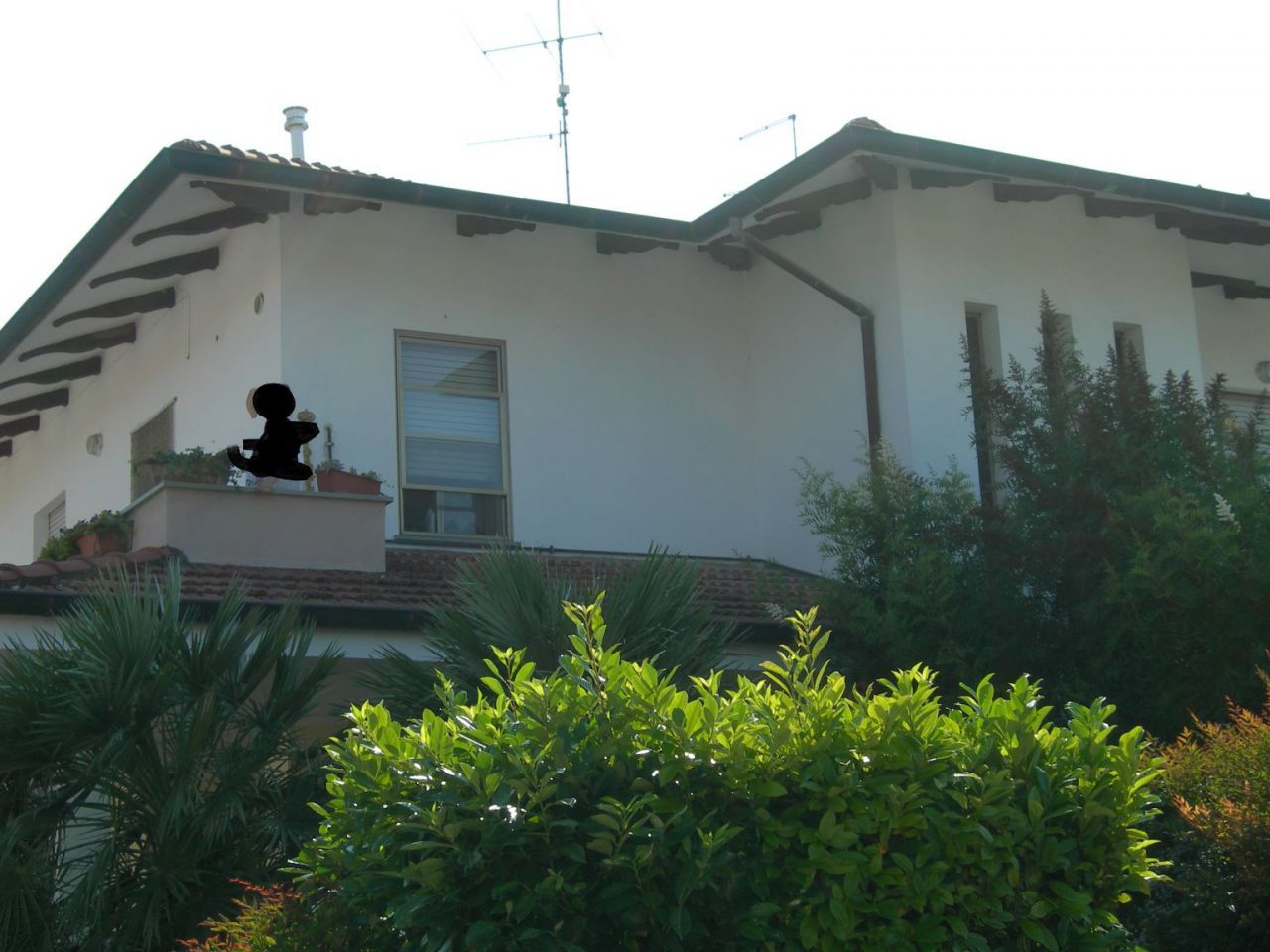 Foto 1 di Casa indipendente  Poggio Torriana