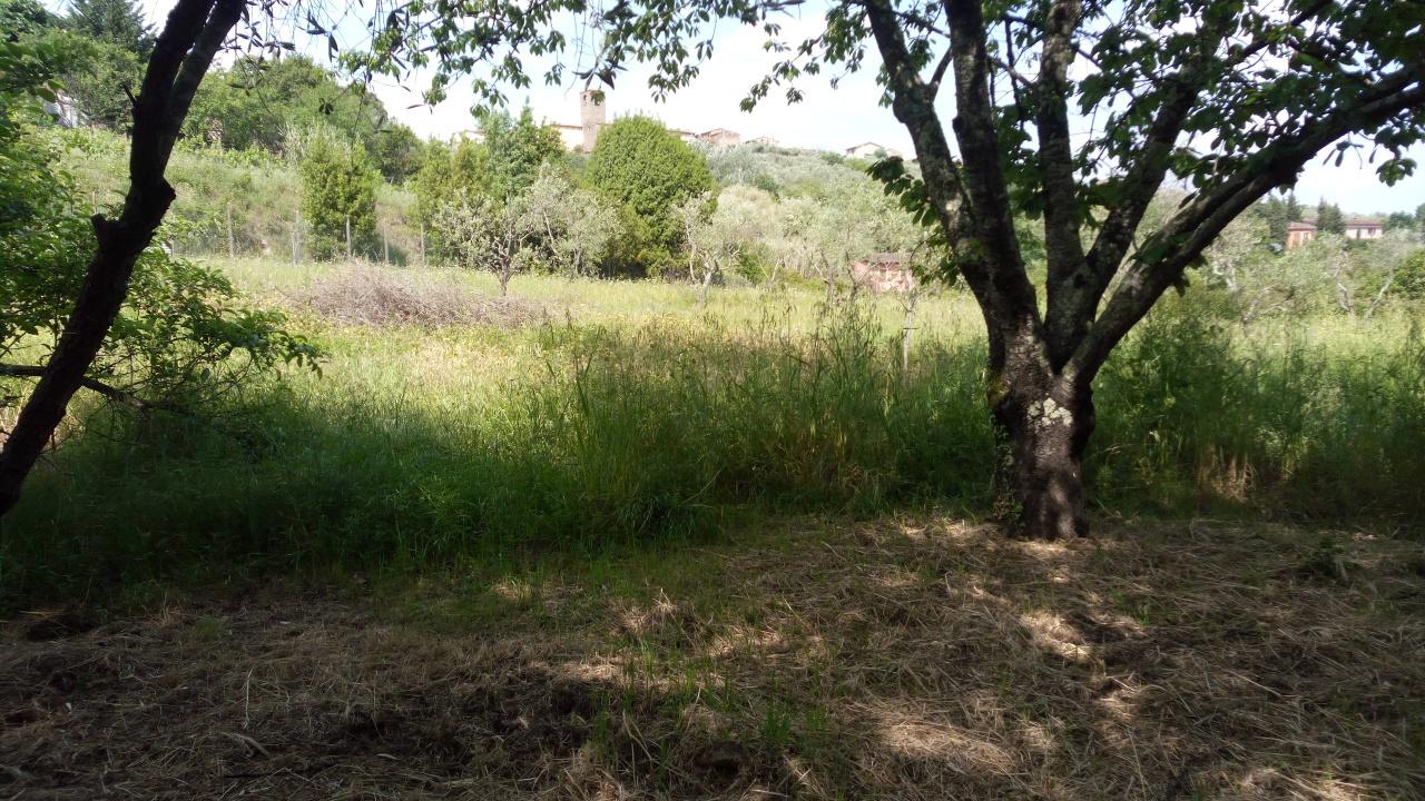 Terreno Agricolo in vendita a Buggiano, 1 locali, prezzo € 60.000 | Cambio Casa.it