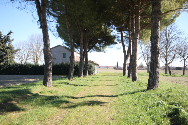 Vai alla scheda: Casa indipendente Vendita - Cesena (FC) - Codice -3303