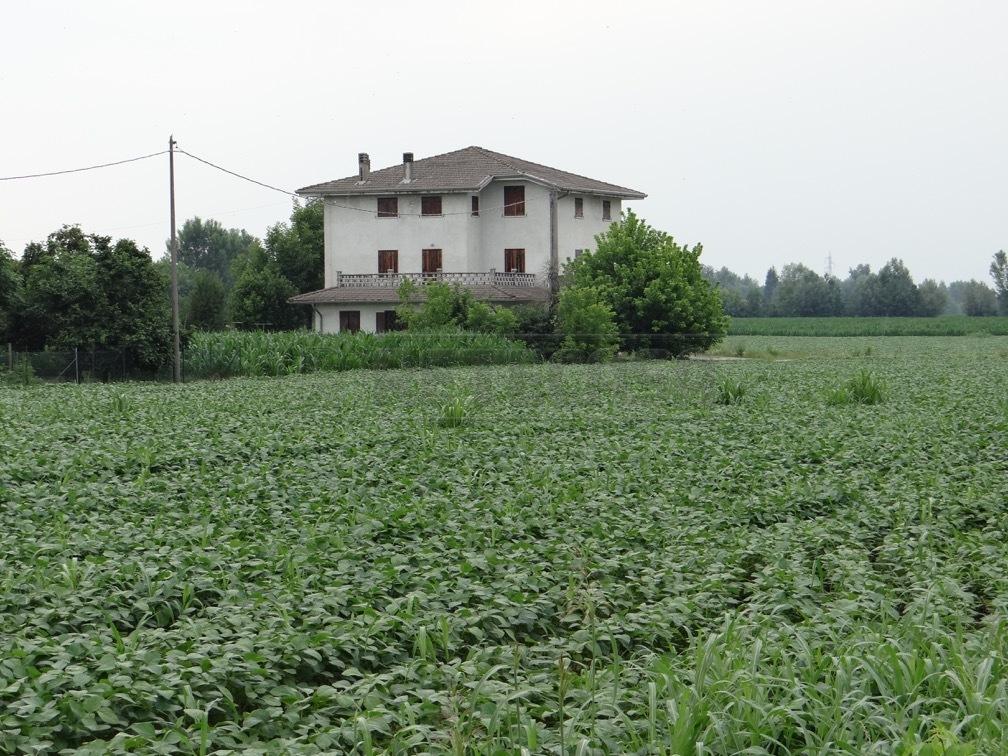 Soluzione Indipendente in Vendita a Vicenza