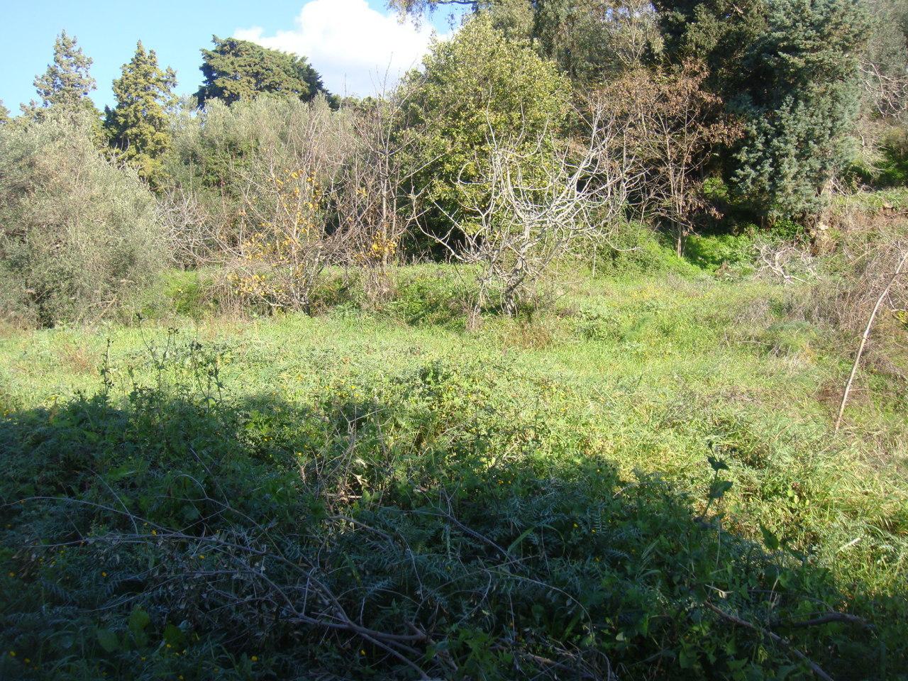 Terreno REGGIO DI CALABRIA vendita  reggio campi  CASTALDO INTERMEDIAZIONE IMMOBILIARE
