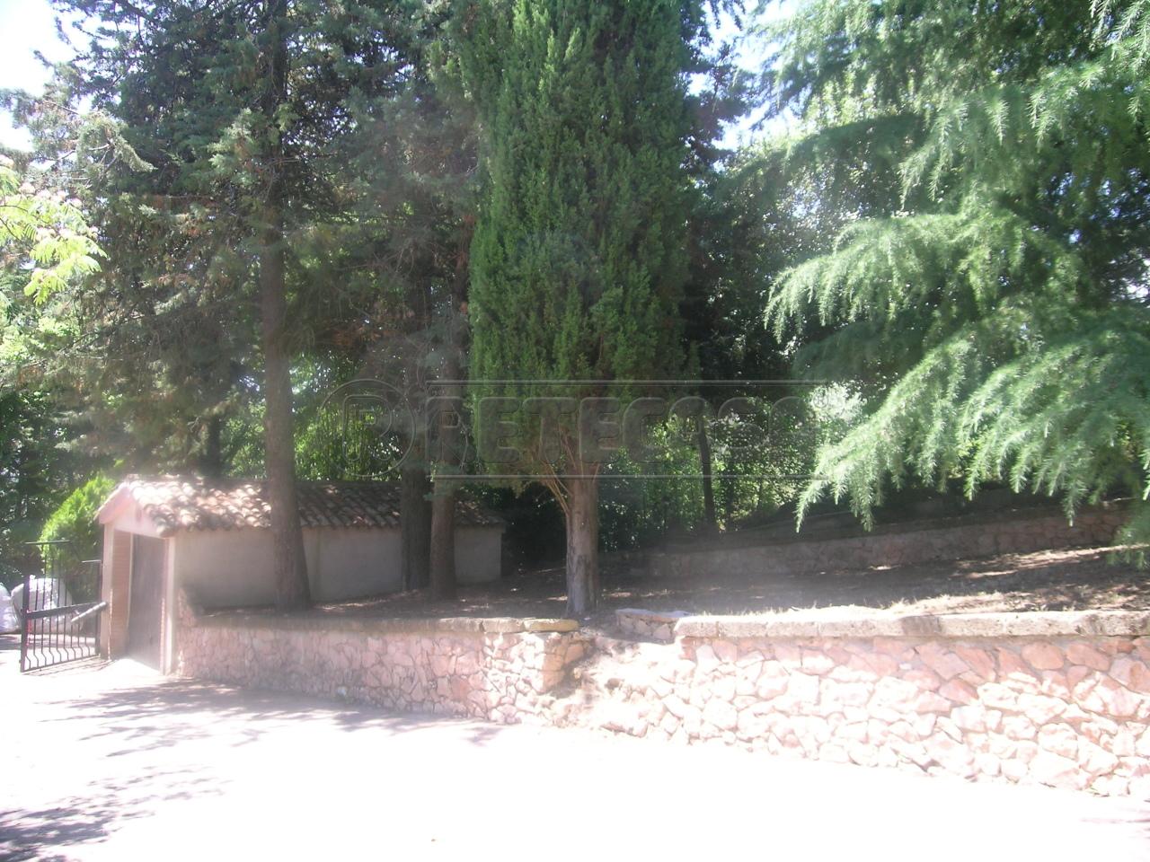 Soluzione Semindipendente in Affitto a Ancona