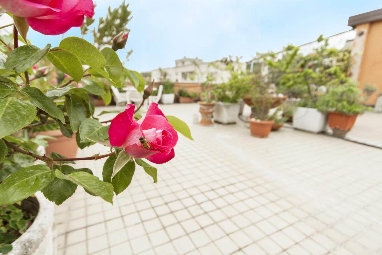 vendita appartamento bologna 6 220  tratt. ris.