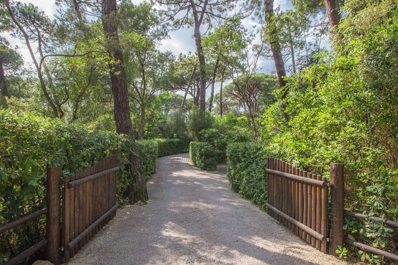 Villa singola Castiglione della Pescaia IA02929 img 3