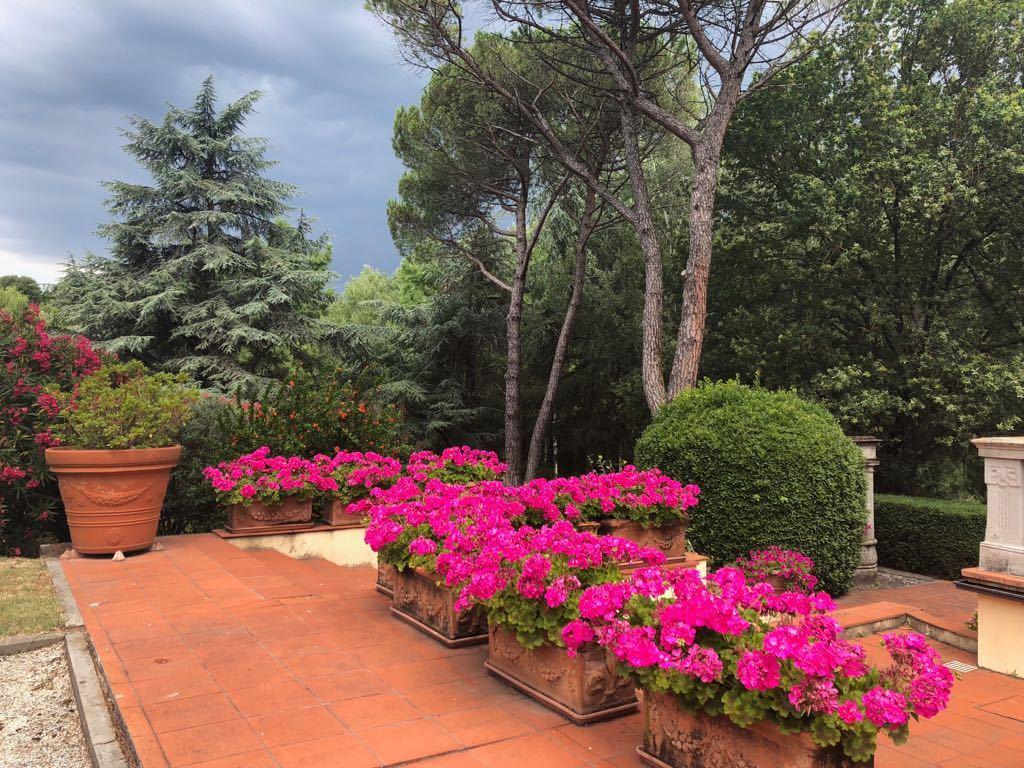 Villa antica Lucca Monte S. Quirico IA02592 img 34
