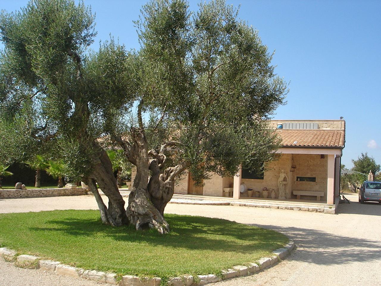 Villa in Vendita a San Cesario di Lecce