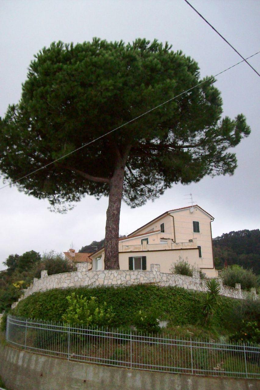 Villa, 500 Mq, Vendita - La Spezia