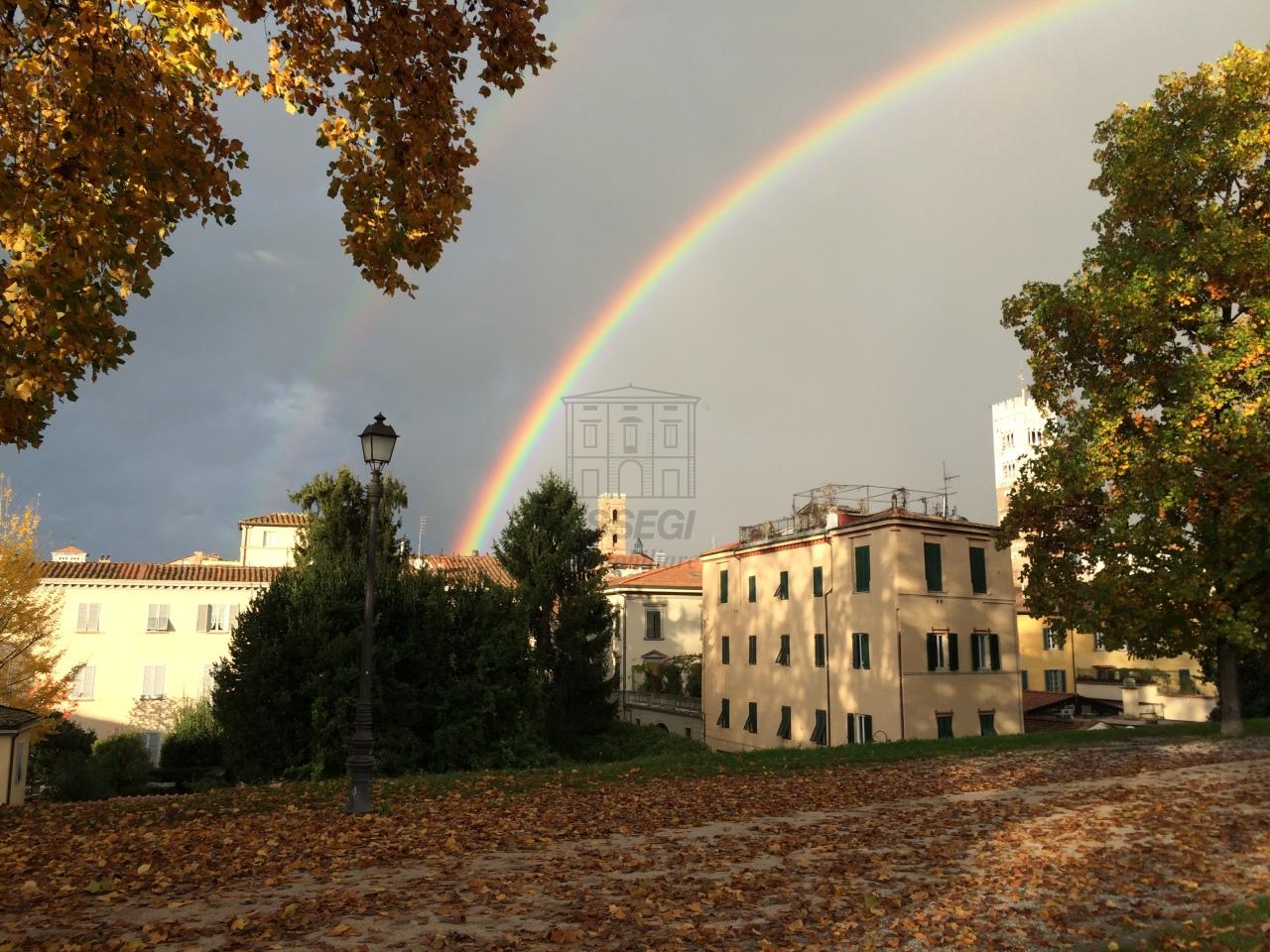 Appartamento Lucca Centro storico IA02937-1 img 8