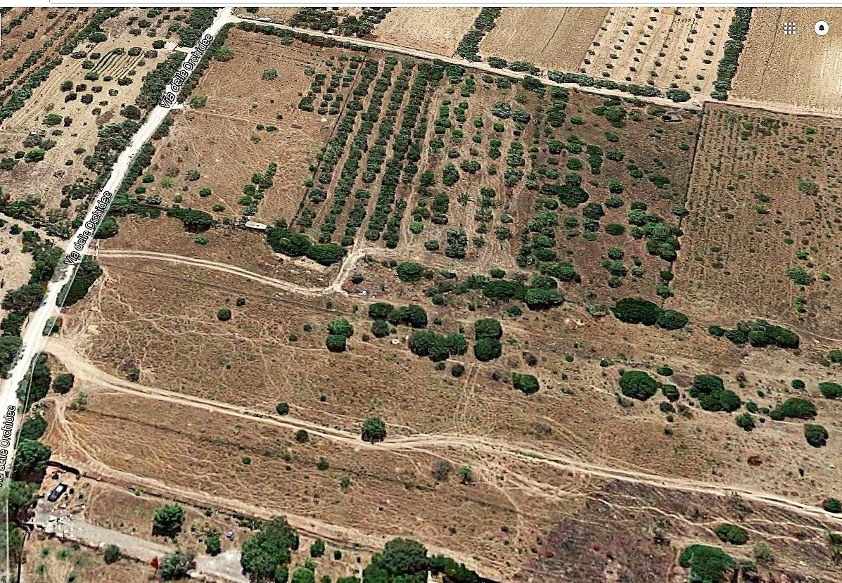 Terreno Agricolo in Vendita a Quartucciu
