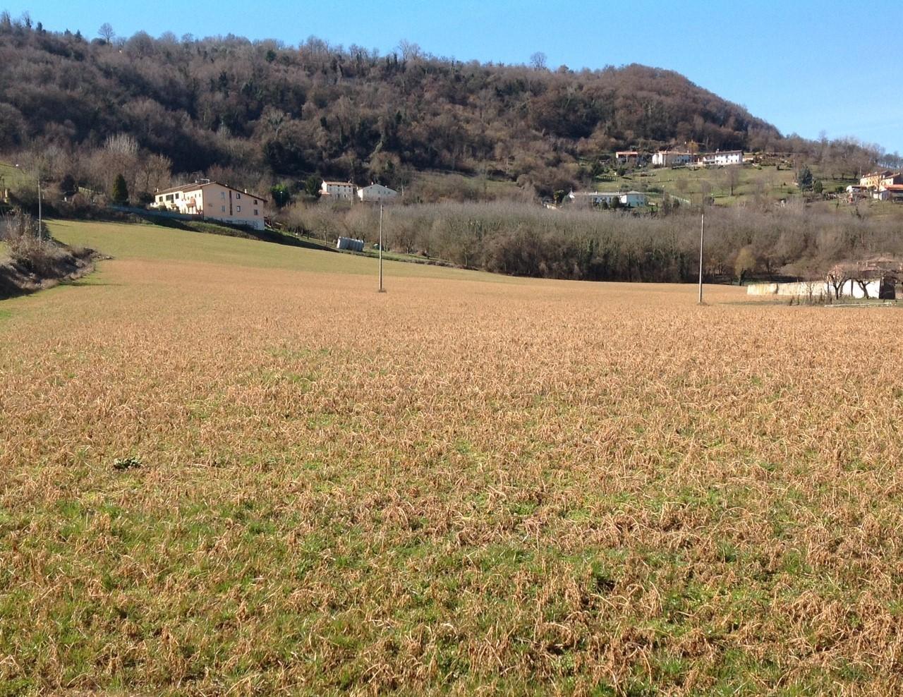 Terreno Agricolo in Vendita a Montecchio Maggiore