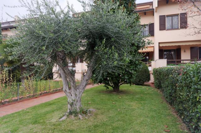 Vai alla scheda: Villa a schiera Vendita - Cesena (FC) - Codice -3284