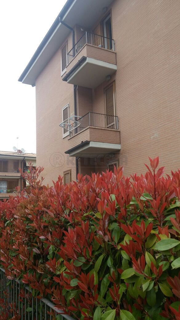 Appartamento in Vendita a Sovicille
