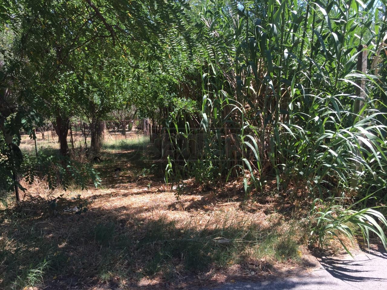 Terreno Agricolo in Vendita a Catanzaro
