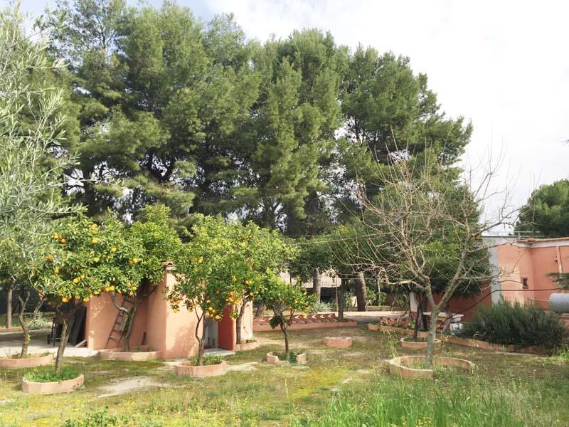 Villa a Schiera in Vendita a Bisceglie