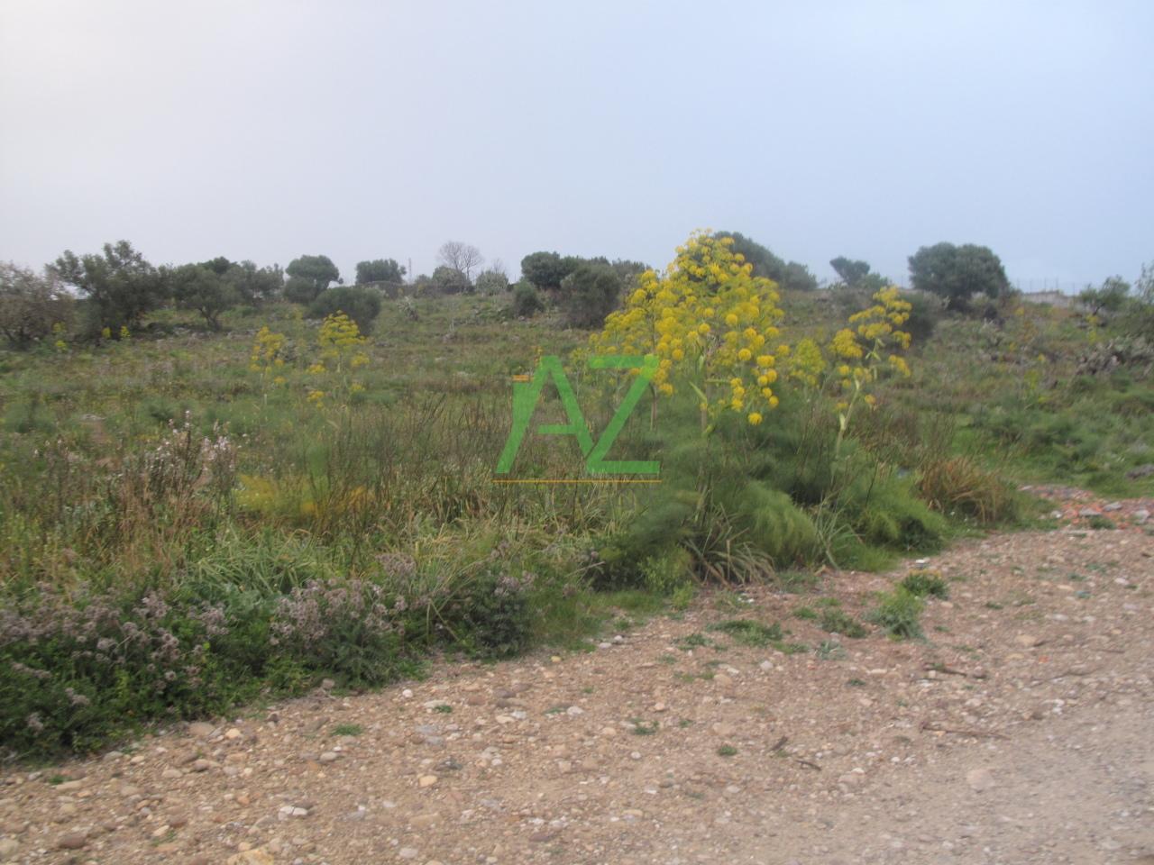 Terreno Agricolo in Vendita a Camporotondo Etneo