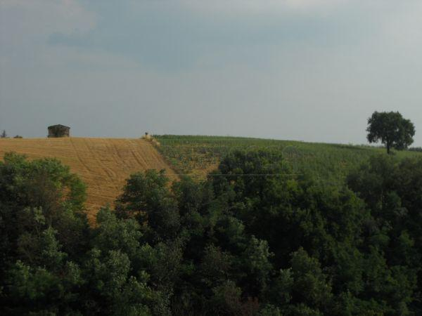 Bilocale Colle di Val d Elsa  3