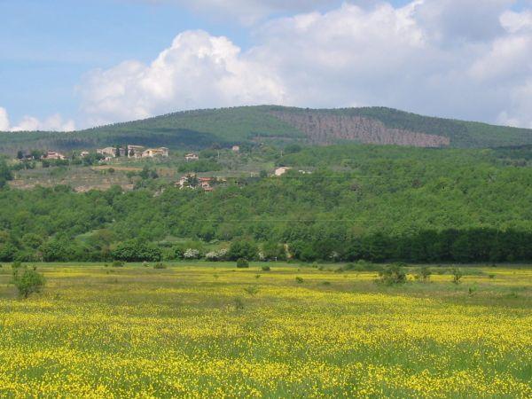 Bilocale Siena  1
